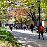 پذیرش دانشگاه های کانادا - پیشرو