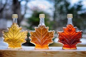 حقایق جالب درباره کانادا - شیره ی افرای کانادا- پیشرو