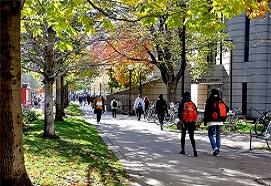 ویزای تحصیلی کانادا - تحصیلات دانشگاهی - پیشرو